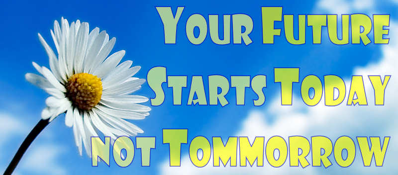 MyFutureOwl.com - Your future begins today not tomorrow